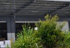 South Johnstone Wire fencing 20